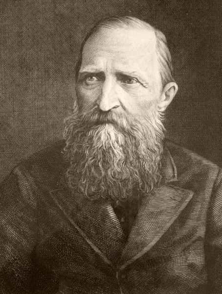 Portret Józefa Ignacego Kraszewskiego. Miedzioryt Henryka Redlicha, 1879